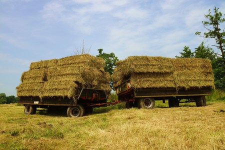 tractor trailer: Straw bales on a tractor trailer