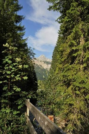 Alpine Landscape - Tyrol Austria