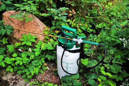 Pressure sprayer in a garden in summer Stock Photo