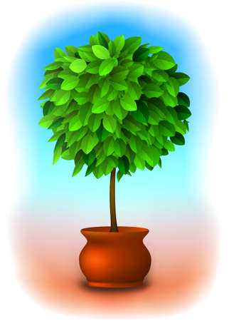 Vector green topiary tree in a pot over a nice, delicate background Vector
