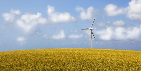Wind Turbine on a yellow corn field Stock Photo