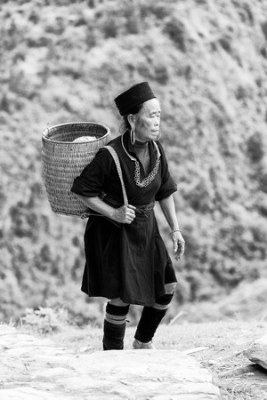 vietnamese ethnicity: SAPA, VIETMAN - SEP 12, 2014: Unidentified Hmong woman with a bucket on her back in Sapa, Vietnam. Hmong is a minority ethnic group of Vietnam