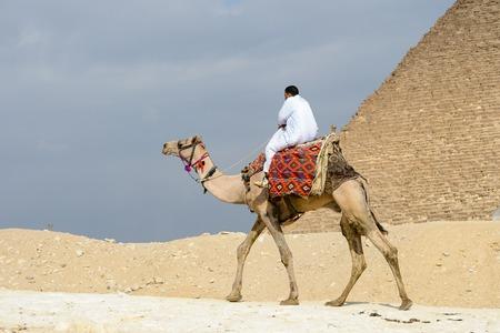 GIZA, EGYPT - NOV 23, 2014: Unidentified Egyptian man rides camel at Giza Necropolis, Egypt. UNESCO World Heritage