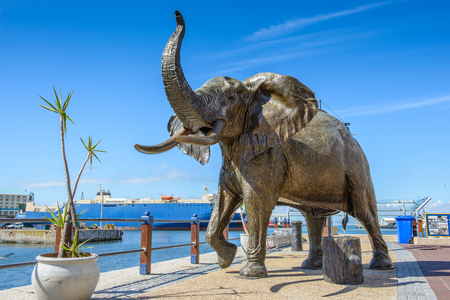 CAPE TOWN, SOUTH AFRICA - FEB 22, 2013: Elephant statue in Cape Town, South Africa. Cape town is the most popular international touristic destination in Africa Editorial