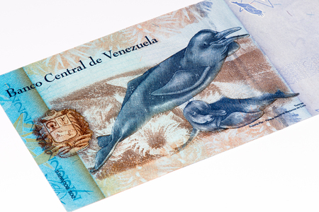 venezuelan: 2 Venezuelan bolivares bank note. Bolivares fuertes is national currency of Brasil
