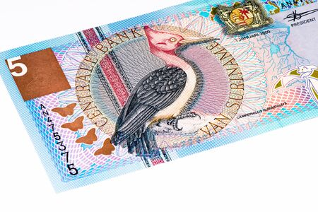 gulden: 5 Surinamese gulden bank note. Gulden is the former currency of Suriname Stock Photo