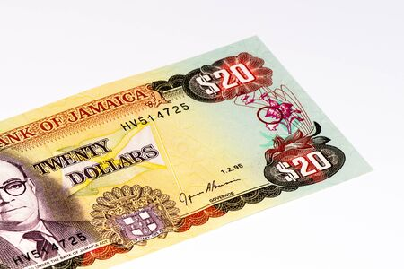 jamaican: 20 Jamaican dollars.  Jamaican dollars is the national currency of Jamaica