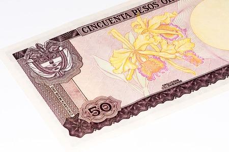 signo de pesos: 50 pesos de oso billete de banco, Pesos de oro es la moneda nacional de Colombia Foto de archivo