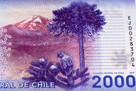 signo de pesos: 2000 pesos de billetes de banco. Peso chileno es la moneda nacional de Chile Foto de archivo