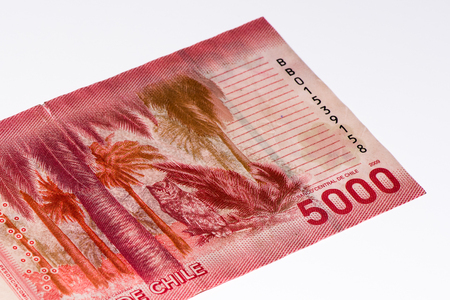 pesos: 5000 Chilean pesos bank note. Chilean peso is the national currency of Chile