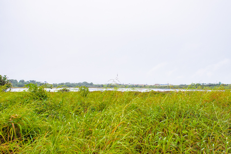 View of the Pitch Lake, the largest natural deposit of asphalt in the world, La Brea, Trinidad and Tobago. It is reported to be 75 m deep.