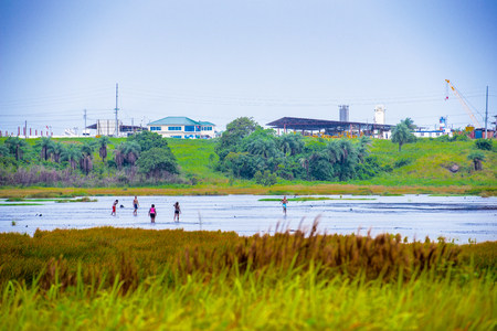 View of the Pitch Lake, the largest natural deposit of asphalt in the world, La Brea, Trinidad and Tobago.