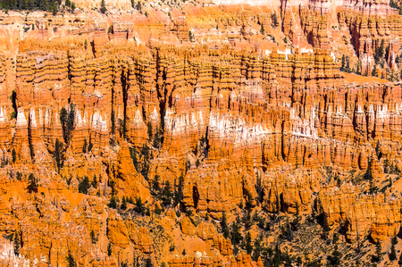 Amazing view of the Bryce Canyon National park, Utah, USA
