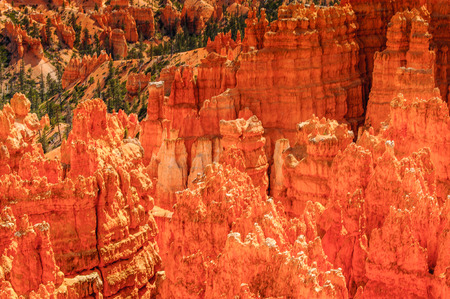 Beautiful view of the Bryce Canyon National park, Utah, USA