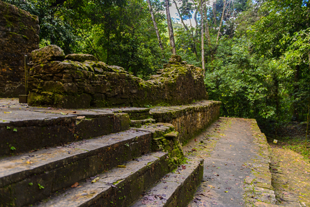 Temple and jungle of Palenque, was a pre-Columbian Maya civilization of Mesoamerica. Known as Lakamha (Big Water). UNESCO World Heritage
