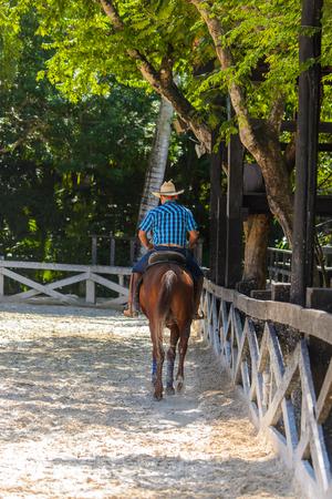 Cowboy rides a horse Stock Photo