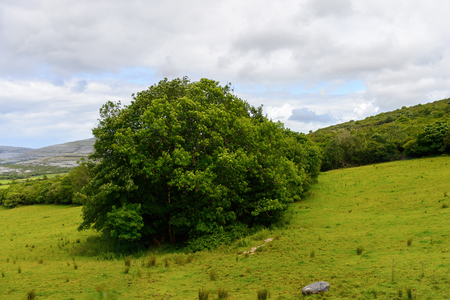 Beautiful nature of Ireland. Stock Photo
