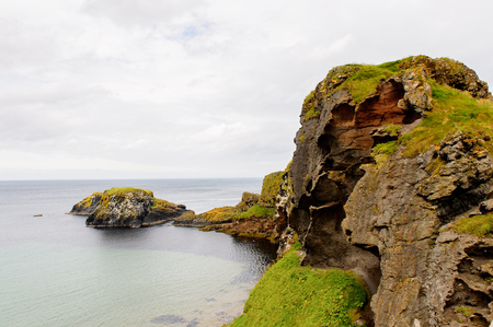 Nature of Carrick-a-Rede, Causeway Coast Route, National Trust. Northern Ireland