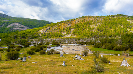 traquility: Incredible nature of the Ushuaia national park, Tierra del Fuego, Argentina Stock Photo