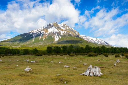 traquility: Landscape of the Tierra del Fuego National Park,  Argentina