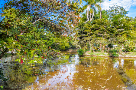 Pond in the park in Georgetown, capital of Guyana, South America