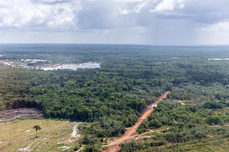 Nature of Guyana, South America Standard-Bild