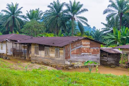 Almost destroyed houses in jungle of Cameroon where people live