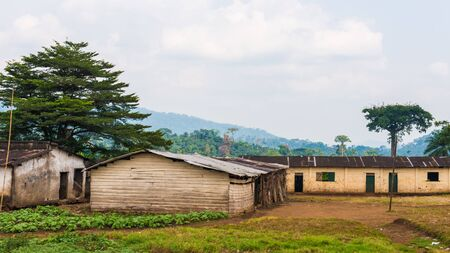 Small Cameroon houses and trees