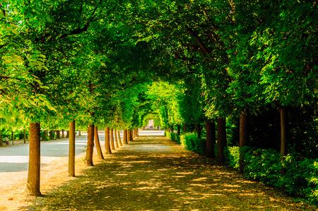 Beautiful gardens of Schonbrunn, Austria