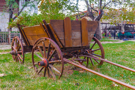 Wooden carriage on the grass