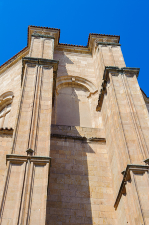 Old city of Salamanca architecture Imagens