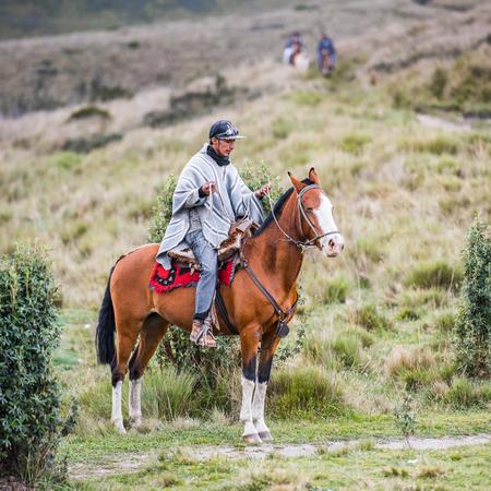 QUITO, ECUADOR - JAN 4, 2015: Unidentified Ecuadorian man riding a horse. 71,9% of Ecuadorian people belong to the Mestizo ethnic group