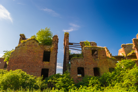 Ruins of the fortress in Russia called Oreshek, Saint Petersburg region.