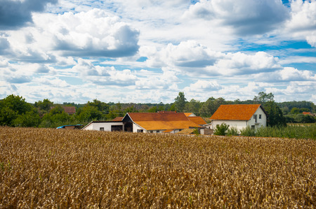 Landscape of the Serbian village Stock Photo