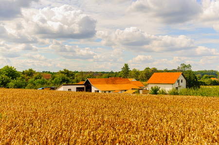 Landscape of the Serbian village Stock Photo