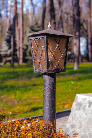 Lamp post in the wood