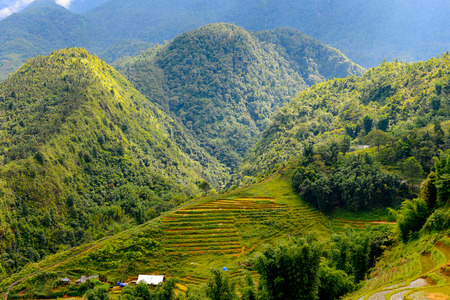 Mountains with green plants and rice terraces in Vietnam with cloudy sky, end of the rain season