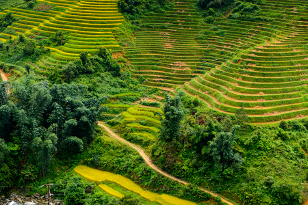Rice terraces in Northern Vietnam Stock Photo
