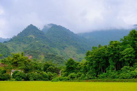 Natural landscape of the Northern Vietnam Stock Photo