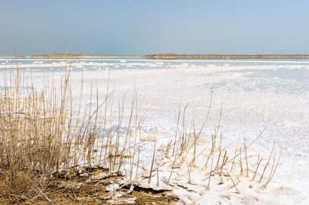 Dead Sea, Israel Imagens - 91985207