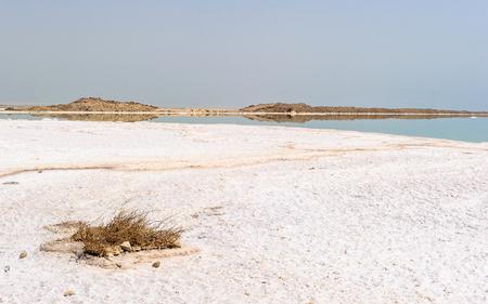 Dead sea coast in Israel Imagens - 91888791