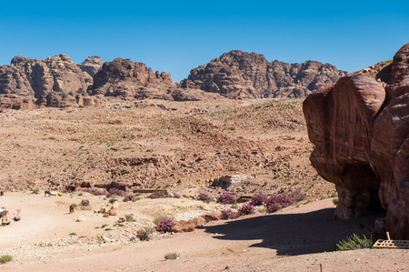 Nature and mountains in Petra (Rose City), Jordan. Petra is one of the New Seven Wonders of the World.