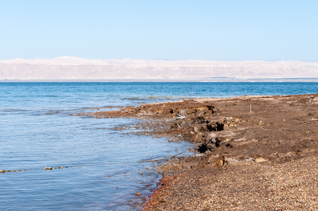 Shore of the Dead Sea Stock Photo