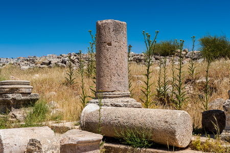Columns of the cardo maximus, Ancient Roman city of Gerasa of Antiquity , modern Jerash, Jordan Stock Photo