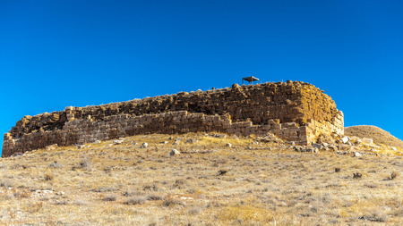 The prison of Solomon, Ancient Persian city of Pasargad, Iran. UNESCO World Heritage