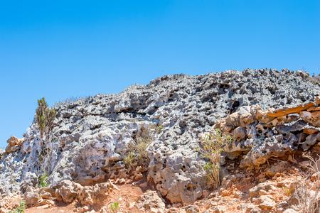 Nature of the Socotra Archipelago, Yemen
