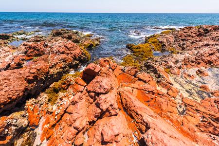Nature of the Socotra Island, Yemen.