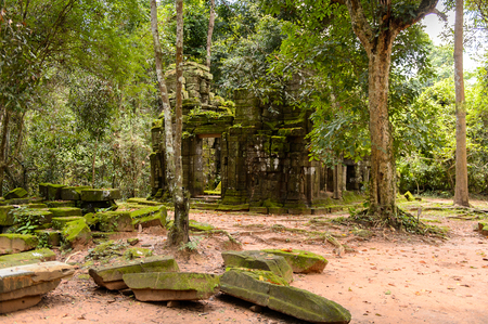 Part of the Ta Prohm (Rajavihara), a temple at Angkor, Province, Cambodia. It was founded by the Khmer King Jayavarman VII as a Mahayana Buddhist monastery and university. Stock Photo