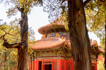 Garden of the Forbidden City, Palace Museum. Imperial Palaces of the Ming and Qing Dynasties in Beijing and Shenyang. 스톡 콘텐츠