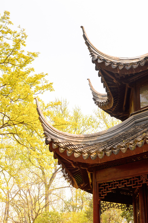 Pagoda at The Humble Administrator's Garden, a Chinese garden in Suzhou Standard-Bild
